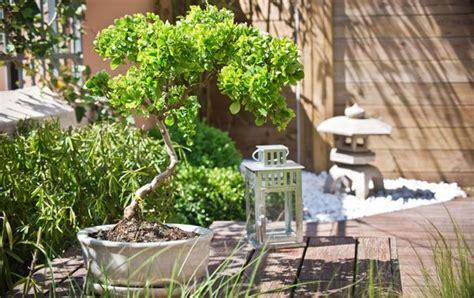 Zen Garten Deko Kaufen by 169 Delphotostock Fotolia Gartentipps Tipps