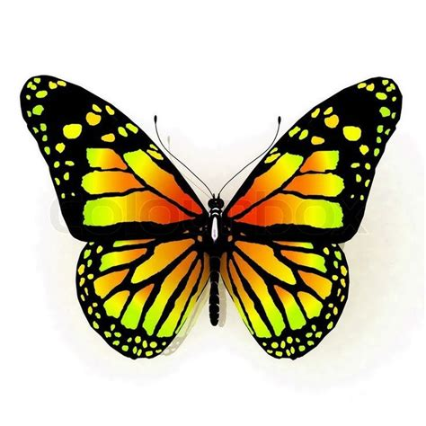 yellow butterfly tattoo 24 best yellow butterfly meaning images on