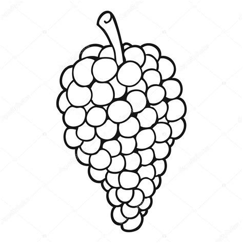imagenes de uvas en blanco y negro uvas dibujos animados blanco y negro archivo im 225 genes