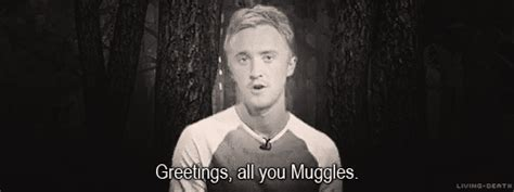 10 Magical Things We Should In The Muggle World by The Winner Is Win Embrace Your Inner Potterhead With A