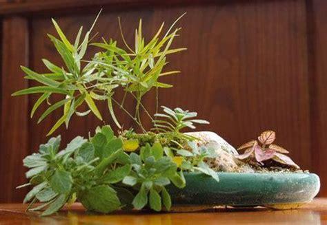 dise o de jardines en madrid vivero en aranjuez dise 241 o de jardines en madrid