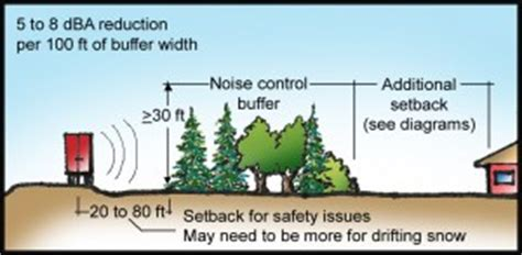 how to reduce highway noise in backyard using trees and shrubs to reduce noise arbor day
