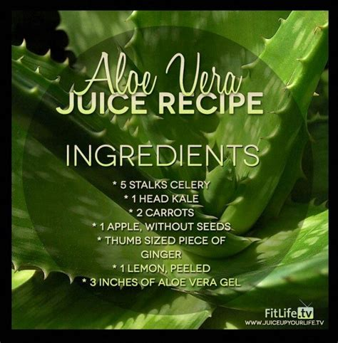 Im Doing Detox And I Blood by 292 Best Images About Juicing Recipes And Tips For