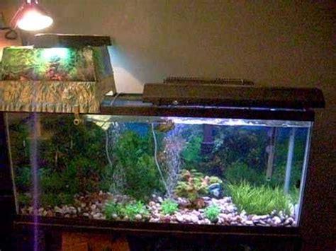 50 gallon res turtle topper tank setup youtube