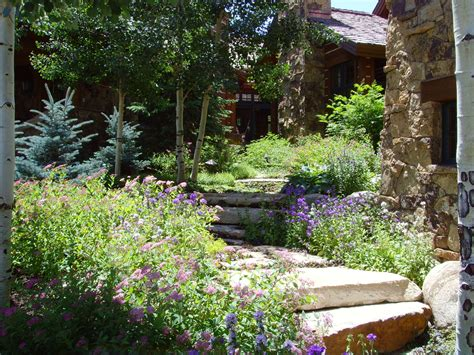 stone stairs garden in rocky mountains plant hills