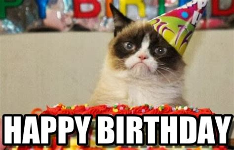 Happy Birthday Meme Cat - the gallery for gt happy birthday memes batman