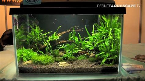 how to make aquascape aquascaping aquarium ideas from zoobotanica 2013 pt 3