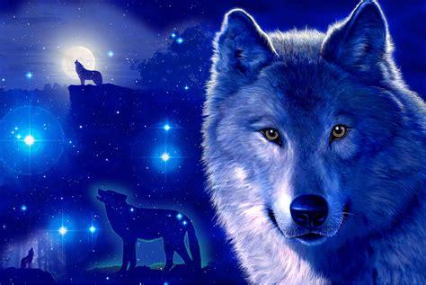 Fondos De Pantalla De Lobos En Movimiento Fondos De Pantalla | fondos de lobos con movimiento fondos de pantalla