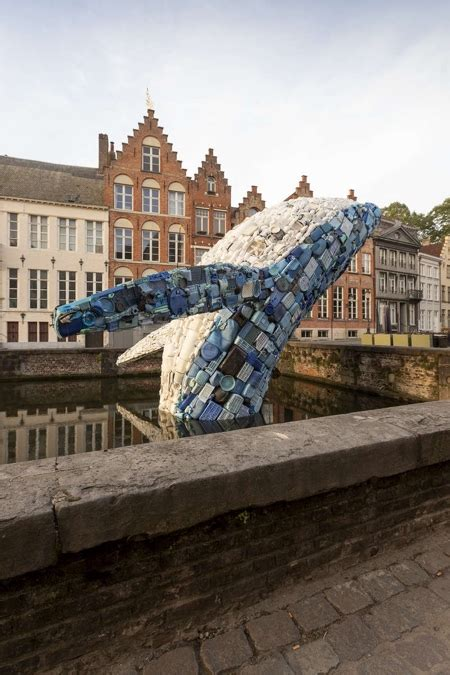 plastic whale  bruges