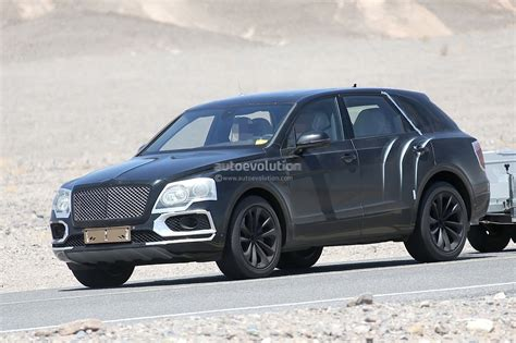 bentley suv 2016 2016 bentley bentayga suv spied testing in death valley