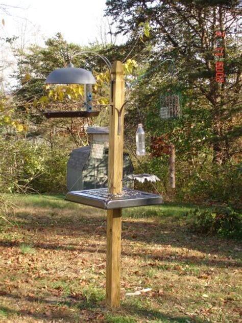 idea for homemade squirrel baffle birds pinterest