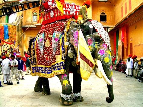 Decorated Elephants india on indian elephant elephants and