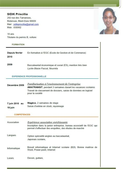 Copie Cv by Gt Gt Consulter Mon Cv E Portfolio De Sidik Priscillia