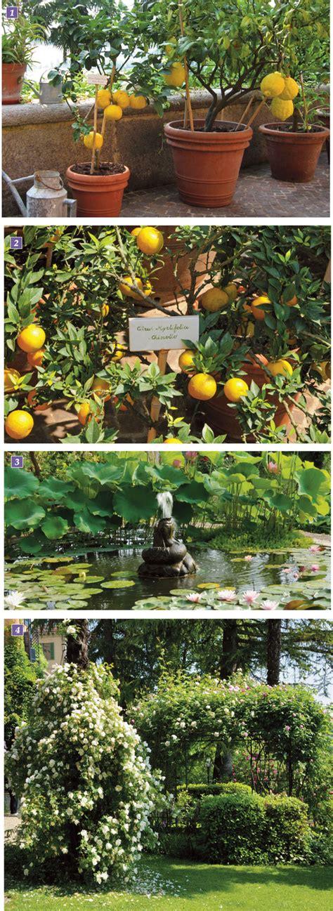 giardini a terrazze progettare un giardino a terrazze fai da te in giardino