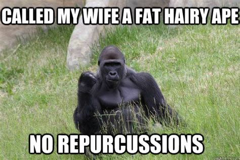 Ape Meme - called my wife a fat hairy ape no repurcussions success