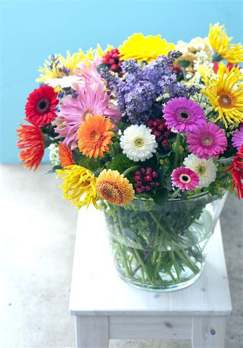 linguaggio dei fiori gerbera il fiore dell allegria la gerbera ingrosso fiori gambin