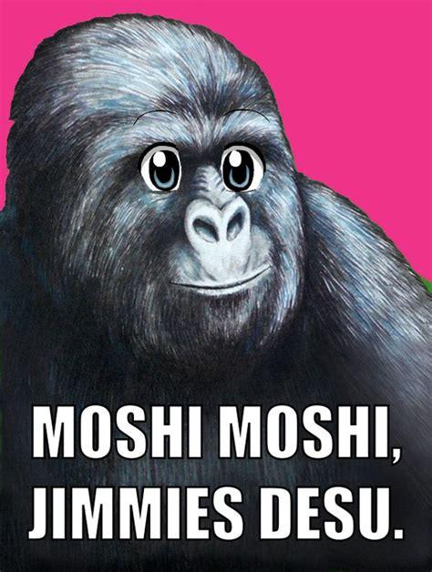 Moshi Moshi Meme - moshi moshi jimmies desu memerial net