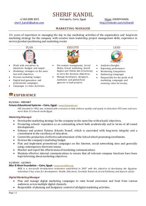 digital marketing cv sles sales and digital marketing manager digital marketing