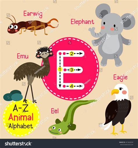 quot animals zoo alphabet with animals u children zoo alphabet e letter stock vector 491883034