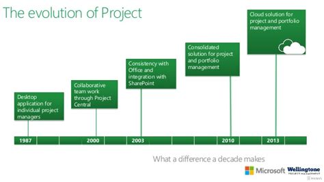 Office 365 Project by Addressing The Most Common Pm Pains With Microsoft Project