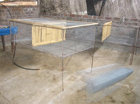 conejeras de madera caseras jaulas caseras cunicultura desde el per 250