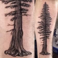 what do tree tattoos mean what does redwood tree ideas designs