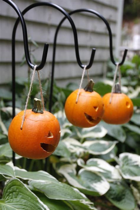 Make Mini Pumpkin Lanterns   HGTV