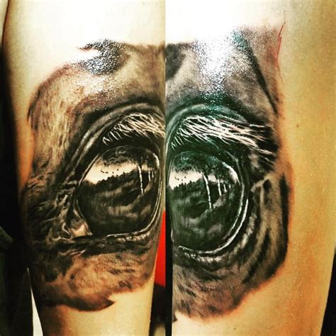 eye tattoo for horses 535 best images about tattoos on pinterest mermaids