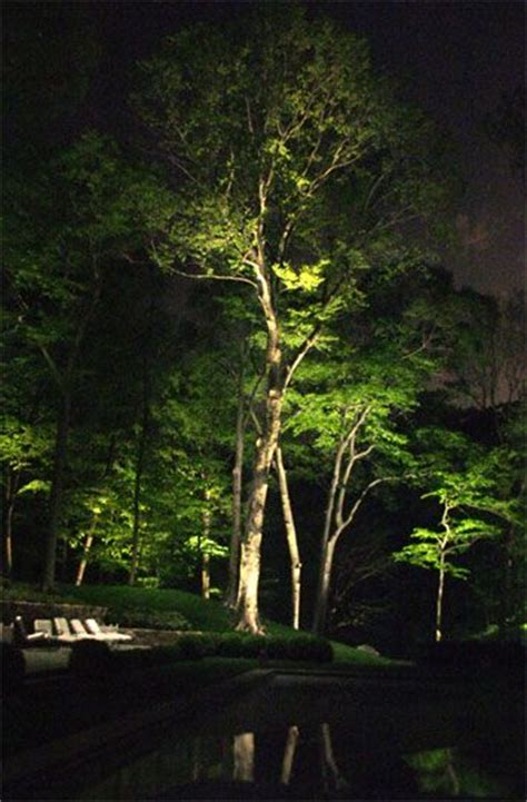Landscape Lighting In Trees Best 25 Outdoor Tree Lighting Ideas On Lights In Trees Outdoor Wedding Lights And