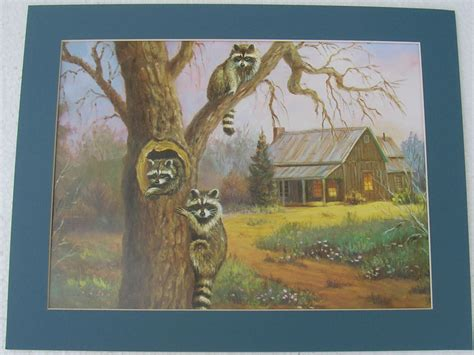 raccoon prints unframed lodge country picture print