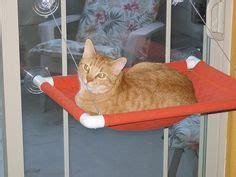 petsmart cat window seat k sill bolster deluxe cat window perch cat perches