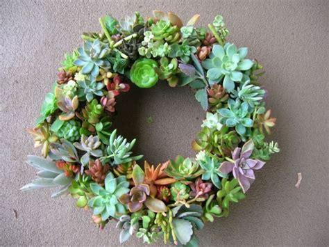 succulent wreath wreaths pinterest