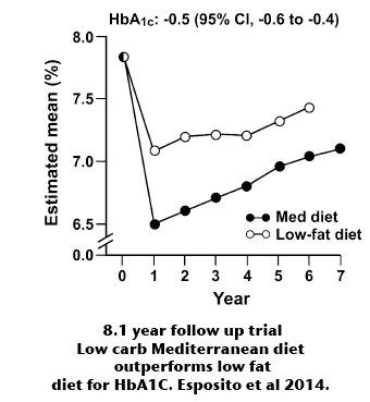 23 studies on low carb and low fat diets time to retire is a low fat or low carb diabetic diet best