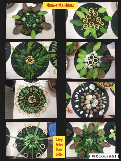 patterns in nature art activities 35 best early years down under images on pinterest art