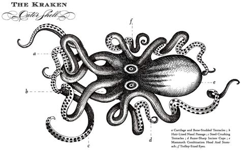 the kraken rum jebiga design amp lifestyle