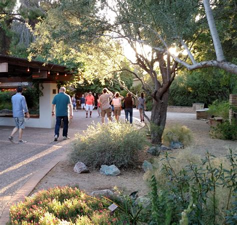 Tucson Botanical Gardens Hours Tucson Botanical Gardens Hours Tucson Botanical Gardens Az Top Tips Before You Go Tripadvisor