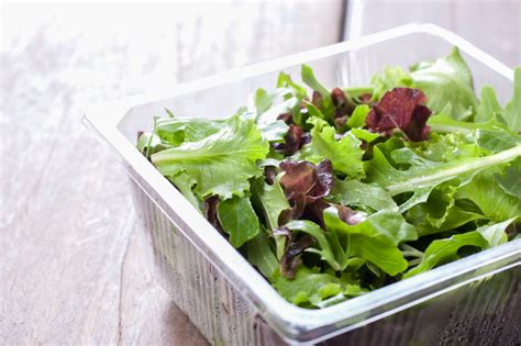 alimentos de calorias negativas conhe 231 a os principais alimentos calorias negativas