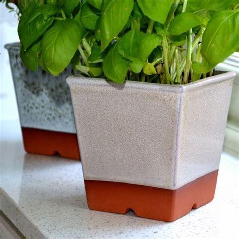 Windowsill Pots by Windowsill Herb Pots Weston Mill Pottery Uk