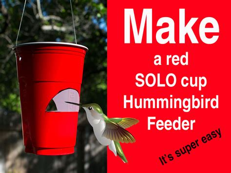 how to make a red solo cup hummingbird feeder