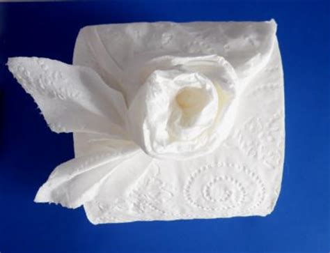 Toilet Paper Origami Flower - make a with toilet paper origami lovetoknow