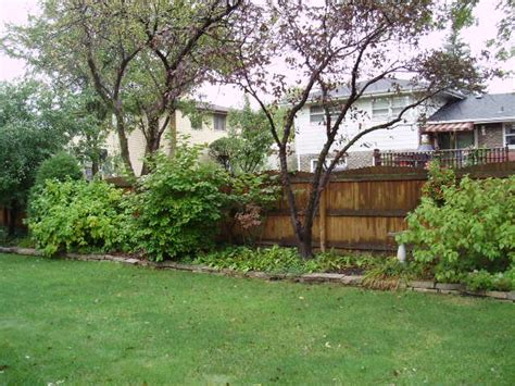 basic backyard landscaping ideas flanagan landscape contractor in orland park