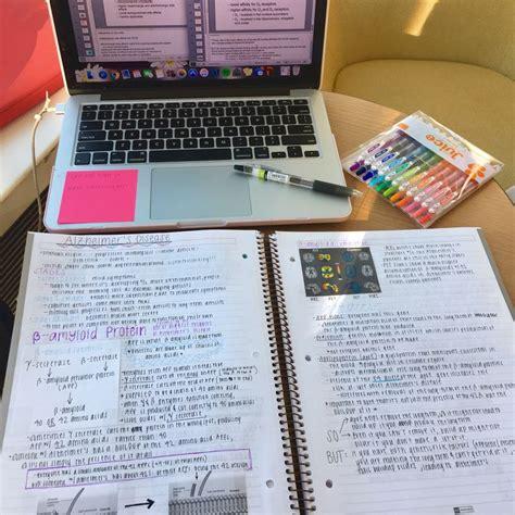 organization pattern of college of nursing ig juliastudies handwriting pinterest school study