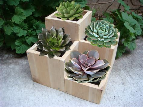Wooden Flower Pots Ideas Modern Magazin Garden Flower Pot