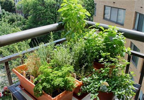 balcony herb garden complete tutorial