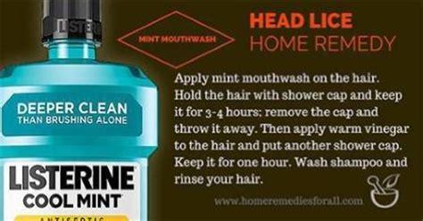 head lice home remedies – defenderauto.info