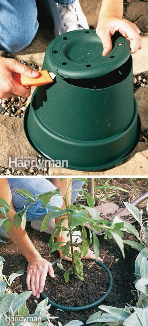 creative garden hacks tips   gardener