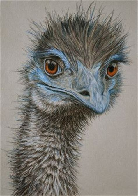 paint nite emu emu ii 30 x 21 cm pastel on handmade paper 650 framed