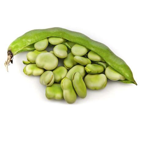 fava beans farm2mountain