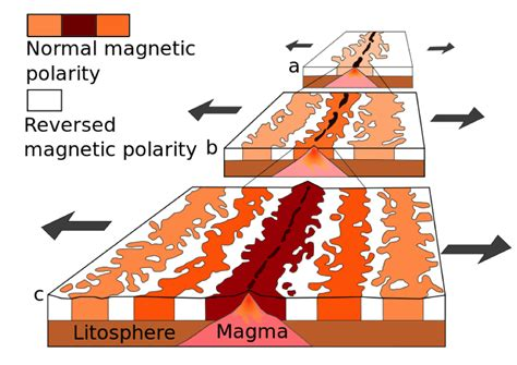 pattern of magnetic reversal how do we know the age of the seafloor earth