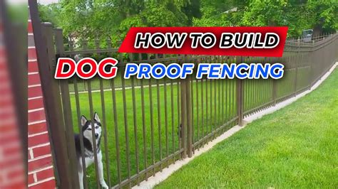 build dog proof fencing youtube